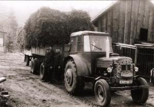 Schmuckgrünlieferung vom Sägewerk Möllensdorf