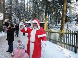 Herzlich Willkommen auf dem Möllensdorfer Wald-Weihnachtsmarkt